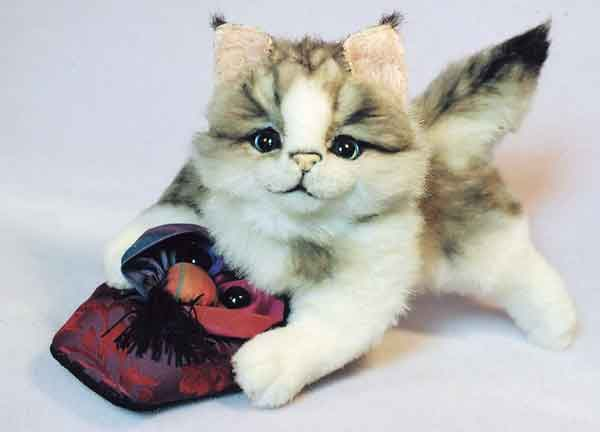 slipper kitten